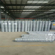 Hot Dipped Galvanized No Climb Field Fence
