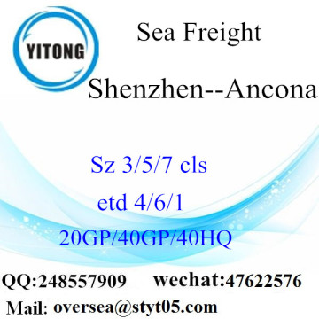 Shenzhen Port Sea Freight Shipping To  Ancona