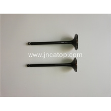 Jac S5 Engine Valve for 2.0L Engine 1003201GD050