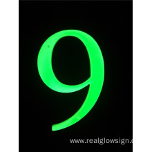 Realglow 3D Number 9