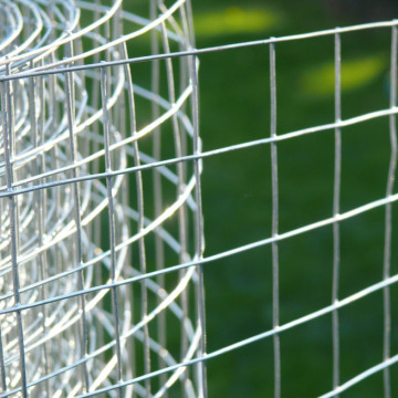 Galvanized Welded Rabbit Cage Wire Mesh