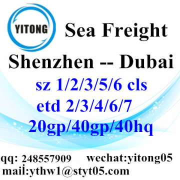 Shenzhen Sea Freight Logistics to Dubai