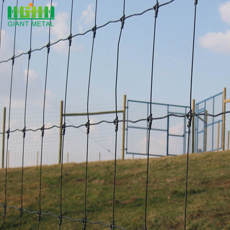 Hot Sale Galvanized  Cheap Farm Fence
