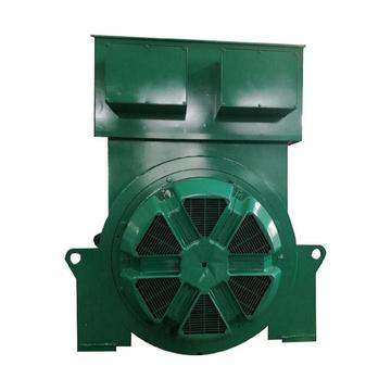 7.2kV High Voltage Double Bearing Industrial Alternator