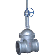 Europe style for Manual Gate Valve Cryogenic Bolt Bonnet Gate Valve export to Israel Suppliers