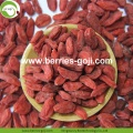 Factory Wholesale Bulk Price Eu Standard Goji Berry