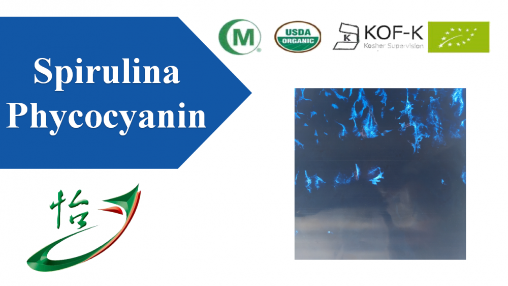 Phycoyanin Spirulina Extract Powder Natural