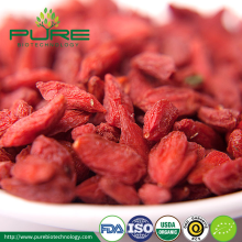 Organic Dried Goji Berry with EU NOP Certified