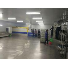 Factory directly sale for Auto Uv Spray Coating Line automatic uv spray coating line export to Comoros Suppliers