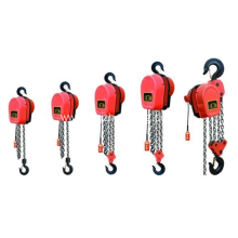 Dhs Electric Chain Block 1t3m Electric Chain Hoist