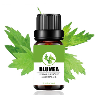 Factory supply 100% pure blumea essential oil bulk