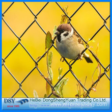 Best Price for for Chain Link Fence Panels Cheap Galvanized Chain Link Fence for Sale export to Vietnam Suppliers
