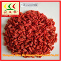 2018 new organic bulk wholesale goji berries