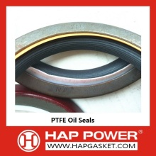 20 Years Factory for Valve Stem Oil Seal PTFE oil seal 3900709 supply to France Metropolitan Supplier