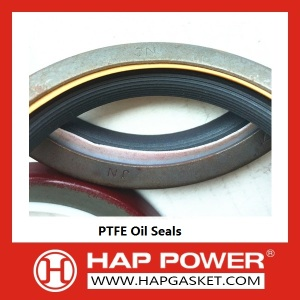 China Manufacturers for Silicone Rubber Oil Seal PTFE oil seal 3900709 supply to Romania Importers