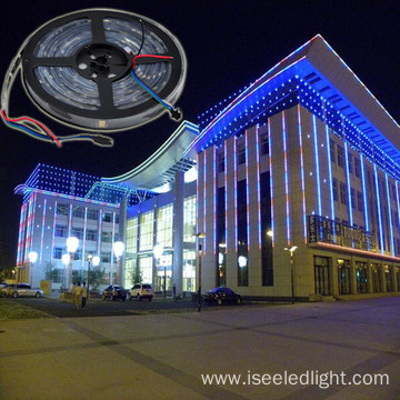ODM for Dmx Led Flexible Strip Light Addressable dmx rgb led flexible strip DC12V supply to Russian Federation Exporter