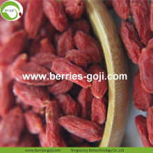 Factory Wholesale Super Food Nutrition Malaysia Wolfberry
