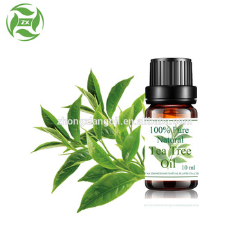 Wholesale Bulk Natural Pure Tea Tree Essential Oil