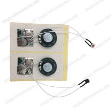 China Sound Module,Sound Module, Pre-Record Sound Module