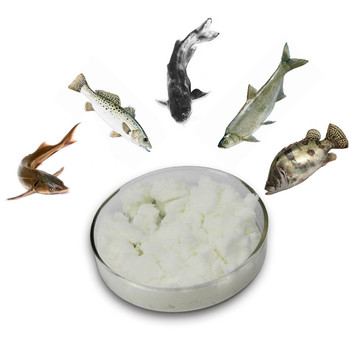 Sea food fish additve TMAO 98%