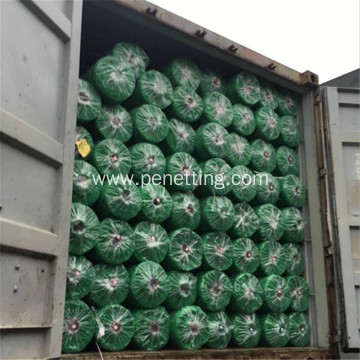 Green Color PP Material Plant Support Net