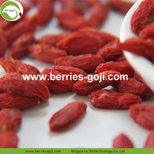Lose Weight Fruit Nutrition Natural Himalayan Goji Berries