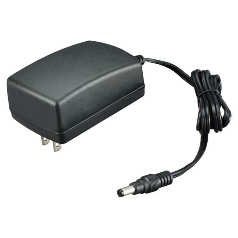 36W Switching Power Adapter