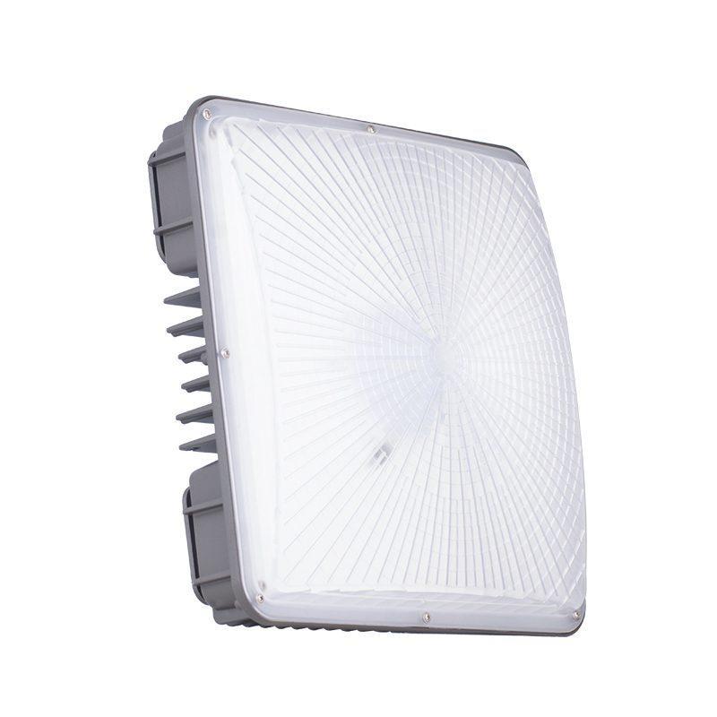 Canopy Light Led (1)