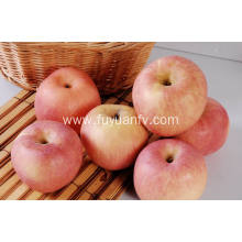 New Crop Fresh Cheap Fuji apple (64-198)