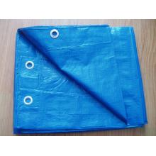China Manufacturers for Blue Poly Tarpaulin 100gsm blue PE tarpaulin supply to India Exporter