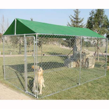 Chain Link Dog Kennel space