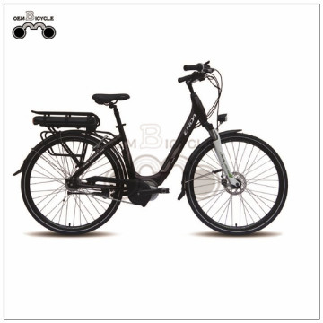 ELECTRIC SYSTEM LI-ION BATTERY CUSTOMIZED ELERTRIC BIKE