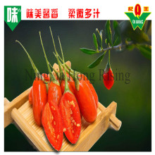 La baie de goji berries in hot sale