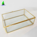 OEM glass crafts rectangle gold geometric glass terrarium