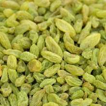 Xinjiang turpan seedless green raisins for sale