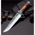 Stainless Steel Hunting Knife of Best Wood Handle
