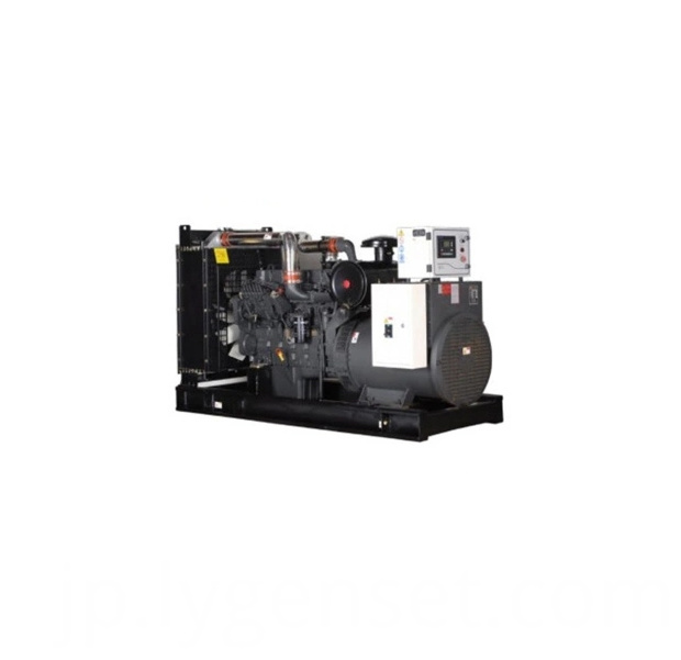 300kw Brushless Electric Generator1