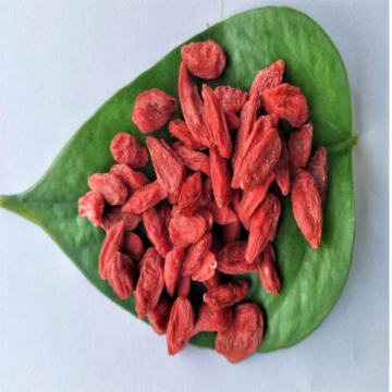 Ningxia Certified Hot sale Dried Organic Goji berry