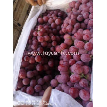 2019 new crop red grape with good price