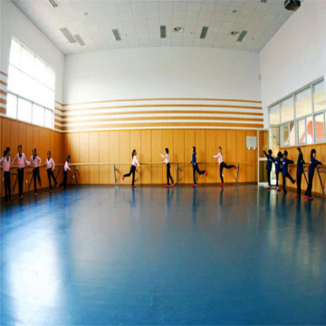 Enlio Multi-use PVC Sports Flooring Dance Room