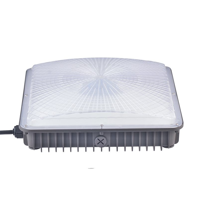 Canopy Light Led (10)
