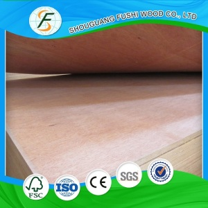 Chinese Plywood 2-25mm Thickness for Furniture