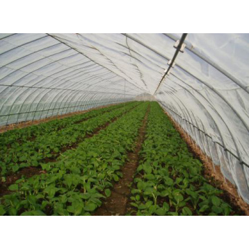 anti insect screen for greenhouse
