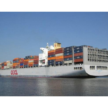 Professional sea freight service from Shantou to Tunis