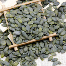Chocolate Ingredient GWS A Pumpkin Seeds Kenrel