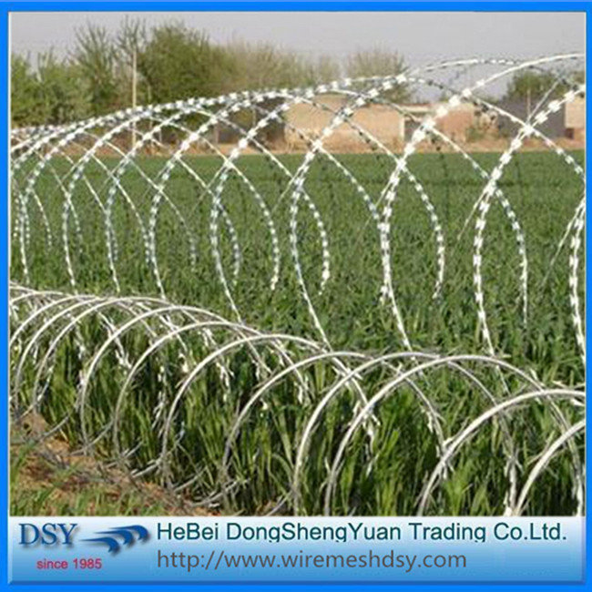 Airport Razor Barbed Wire Flat