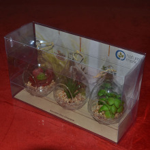 Crafts Clear Folding Box For Display Products Or Put Plants