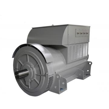 Diesel Air-Cooled Brushless 7200V Generators