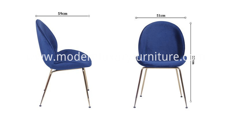 Size of Beetle Chair