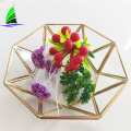 Clear Table Decoration Centerpiece Glass Bowl Terrarium